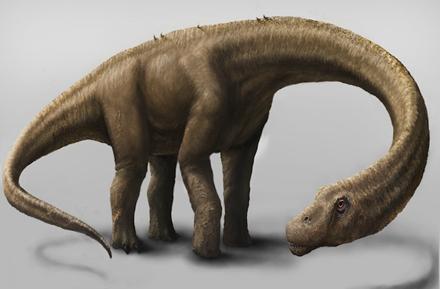 这种恐龙是世界上最大的陆地动物
