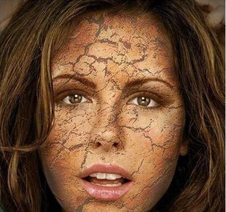 口腔皮肤组织结构图