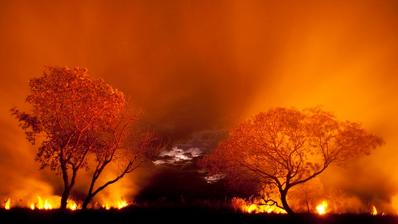 烧了5500年的,究竟是什么火?的头图
