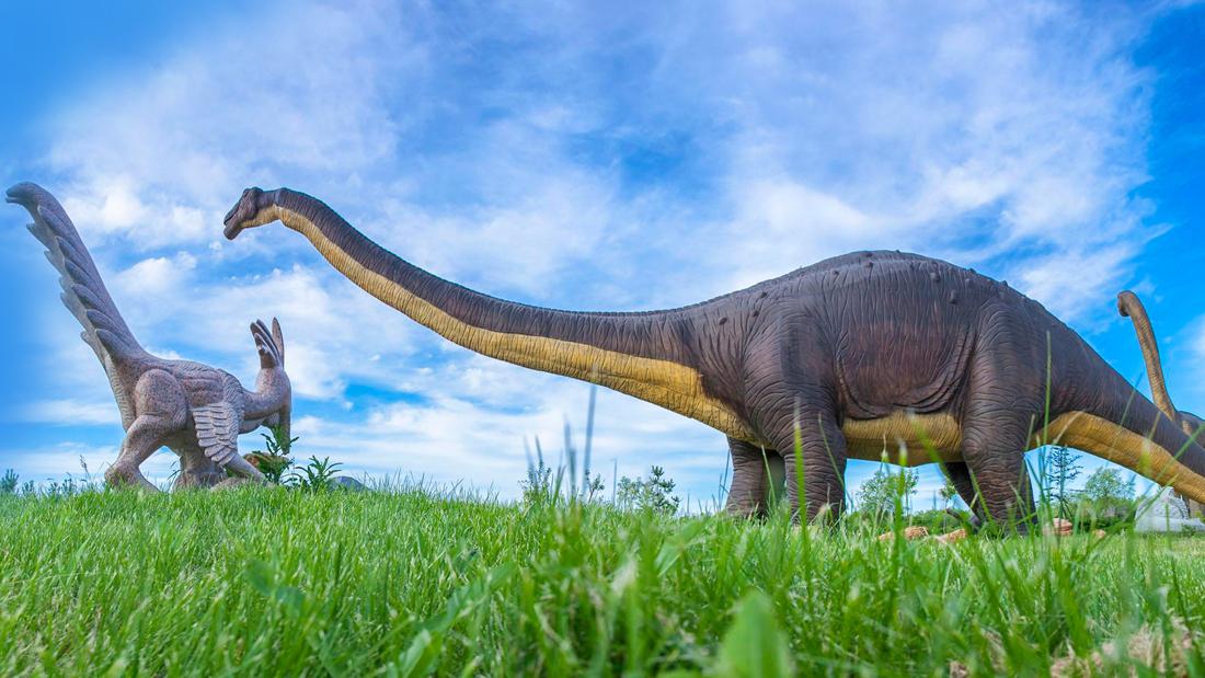 有可能复活已灭绝的物种吗?