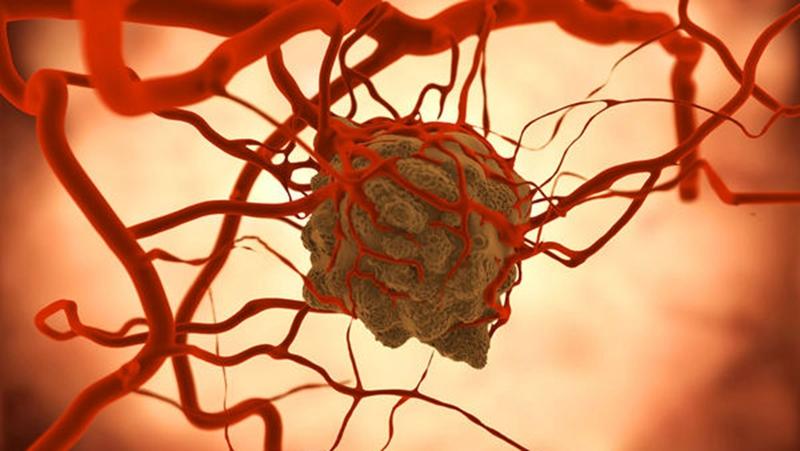 """癌变是细胞的""""本能属性""""?的头图"""